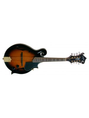 MORGAN MANDOLIN M 70 E AV W/CASE
