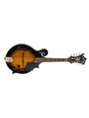 MORGAN MANDOLIN M 70 E VS W/CASE