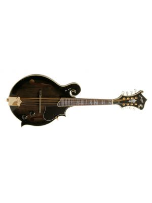 MORGAN MANDOLIN M 70 E TBK W/CASE